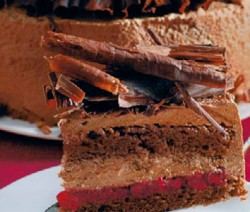 Čokoladna torta sa brusnicama